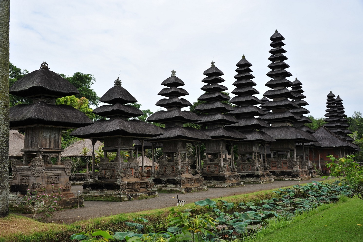 Filming in Bali
